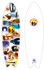 MOTE Custom Boards